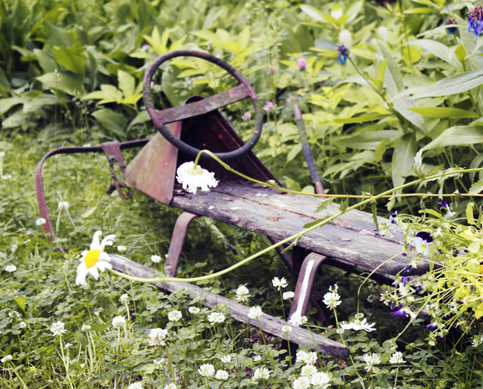 An old wooden sled is a wonderful detail in the garden